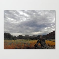 The big Picture Canvas Print