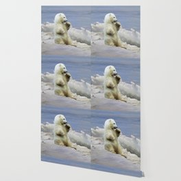 Cute Polar Bear Cub & Arctic Ice Wallpaper