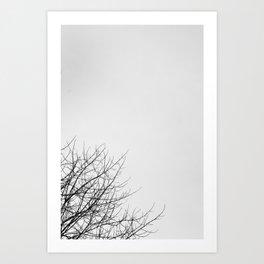 II Art Print