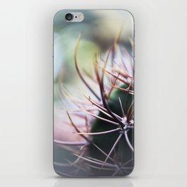 Cactus in the sunlight iPhone Skin