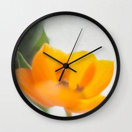 Radiance IV Wall Clock