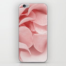 Pink flora Rose Bud- Roses and flowers iPhone Skin