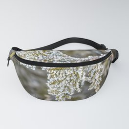 Frost covered tree leaves Fanny Pack