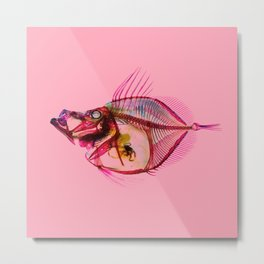 Mirror Dory with pink Metal Print