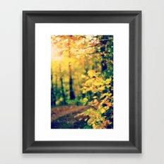 Sunshine on my Shoulders Framed Art Print