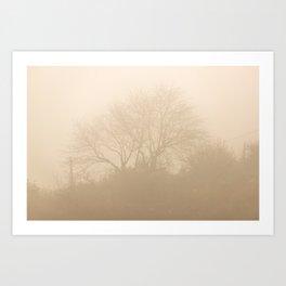 Foggy sunny morning Art Print