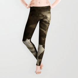 Pink Roses in Anzures 5 Antiqued Leggings