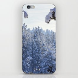 Winter Wonderland - Awbrey Meadow in Central Oregon iPhone Skin