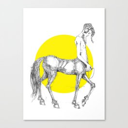 Young centaur with headphones and mp3 player Canvas Print