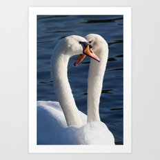 Courting Swans  Art Print