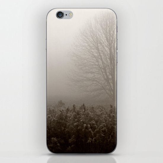 Falls first frost iPhone & iPod Skin