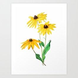 yellow sun choke flower Art Print