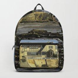 Shell Beach Backpack