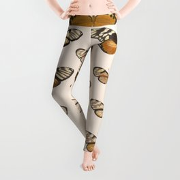 Vintage Scientific Hand Drawn Illustration Anatomy Of Butterfly Insect Patterns Biology Art Leggings