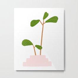 Fiddle Leaf Fig Tree Plant Metal Print