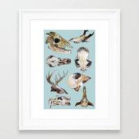 skulls Framed Art Prints featuring Skulls by Katelyn Patton