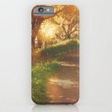 Oak Trail iPhone 6s Slim Case