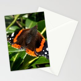Red Admiral Butterfly in the bush Stationery Cards