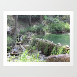 A Day at the River Art Print