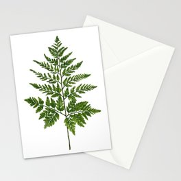 Fern 2 Painting Stationery Cards