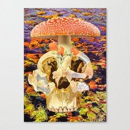 The Birth of Ritual Canvas Print