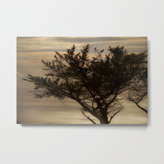 forest's whisper at the dawn Metal Print