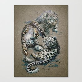 Snow leopard 2 background Canvas Print