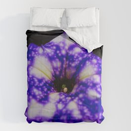 Famous Night sky Petunia Comforters