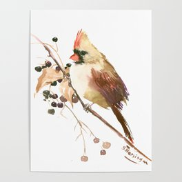 Cardinal Bird and Fall Berries Poster