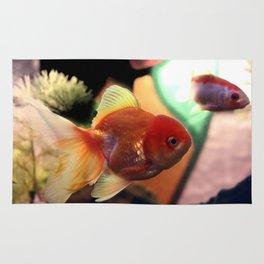 freshwater Gold fish Rug