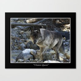 """Vision Quest""  Wild Grey Wolf Canvas Print"