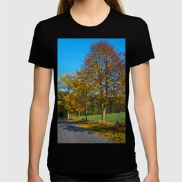 Autumnal feeling of October T-shirt