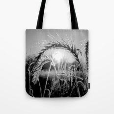 Wheat Sunrise B&W Tote Bag