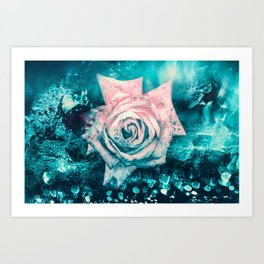 Queen Rose Art Print