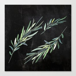 Eucalyptus leaves on chalkboard Canvas Print