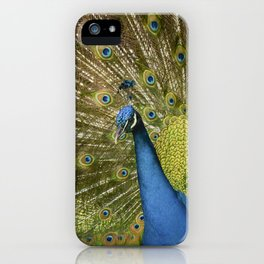 Peacock. iPhone Case