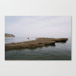 Seaside Stones Canvas Print