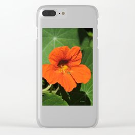 Nasturtium Clear iPhone Case