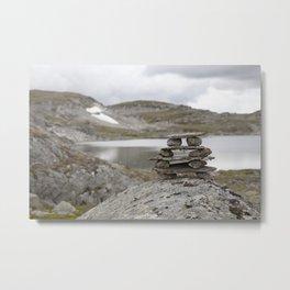 Norway Sculpture II Metal Print