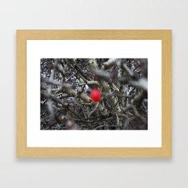 The Hidden Fruit Framed Art Print