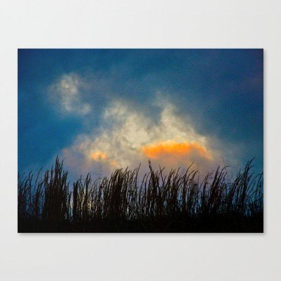 Last Bit of Sun Canvas Print