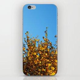 Yellow iPhone Skin