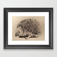 Coy hedgehog Framed Art Print