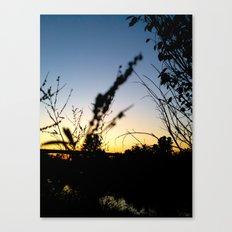 Sunset Contrast Canvas Print