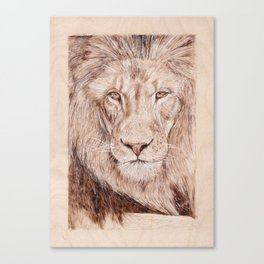 Lion Portrait - Drawing by Burning on Wood - Pyrography Art Canvas Print