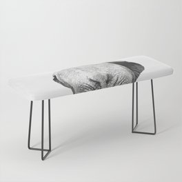 Black and white elephant animal jungle Bench