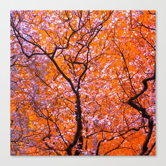 autumn tree IX Canvas Print
