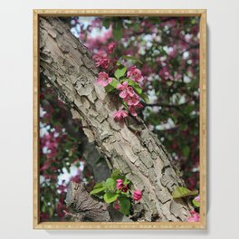 Blooming Crab Apple Tree Branch Serving Tray