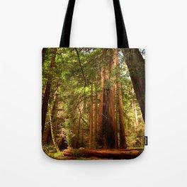 Muir Woods Walkway Tote Bag