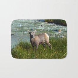 Baby big horn sheep in Jasper National Park Bath Mat